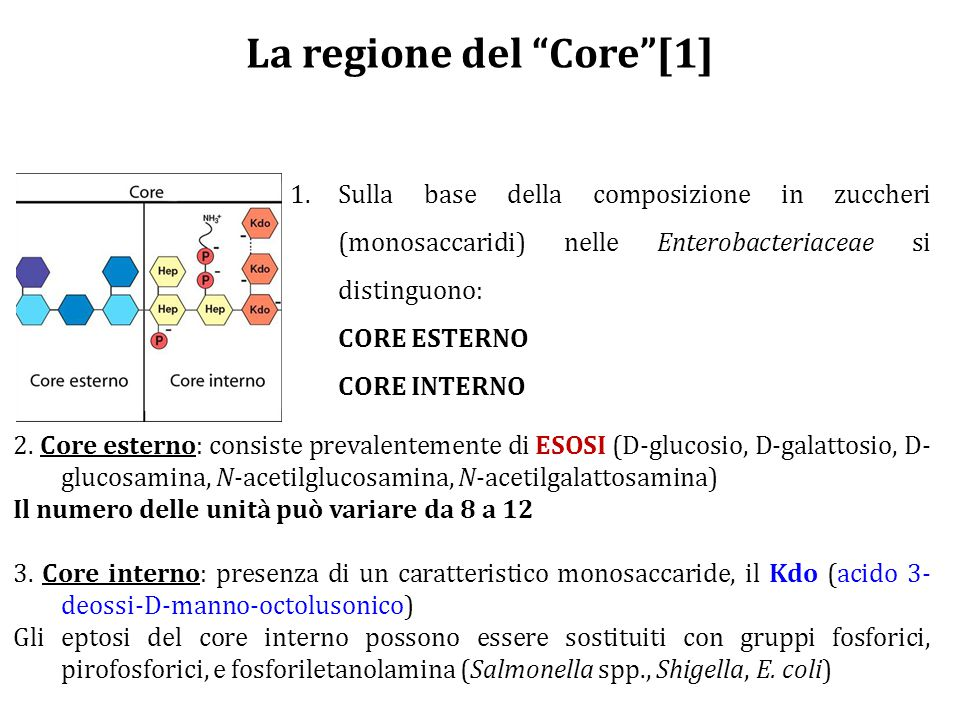 La regione del Core [1]